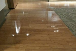 Things to Consider Before Choosing Hardwood Flooring for Your Home in Bartow, GA