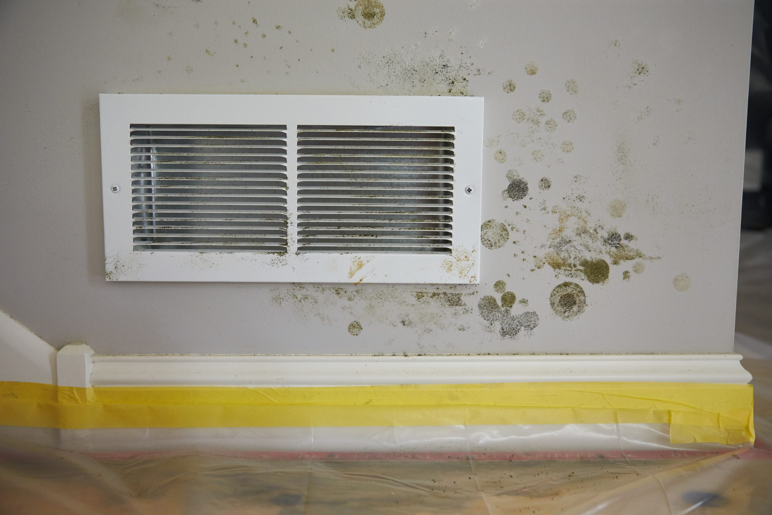 5 Signs of Mold Growth in Your HVAC System