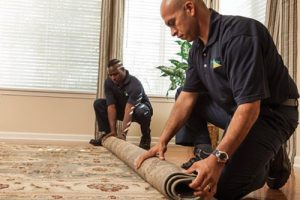How to Select the Best Carpet for Your Home