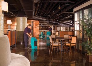 What is the Best Water Damage Restoration Company in Bradenton, Florida?